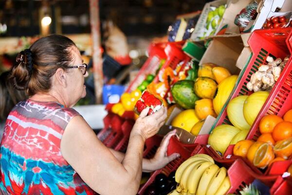Projeto de lei cria política de incentivo às feiras livres de produtos orgânicos